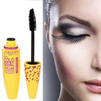 Mascara Make up